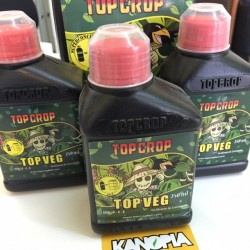 TOP VEG (NPK 9-4-8) 250ML